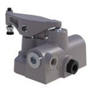 Picture for category STAYLOCK® Swing Clamps / Flow Limit Valves Metric